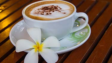 hawaiian-coffee-in-cup-hibiscus-flower