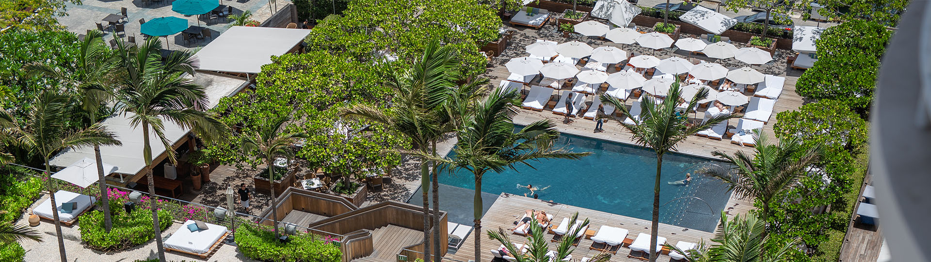 Aerial view of resort pool, lounge chairs and palm trees in Honolulu, HI